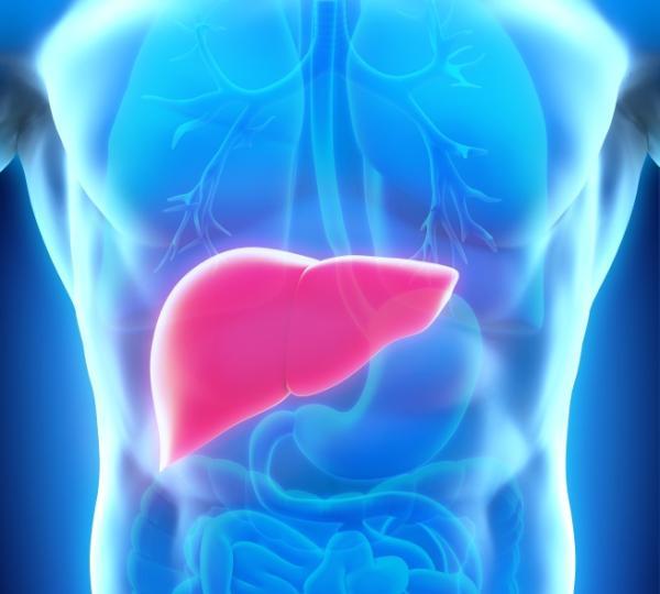 Lengua blanca: causas y tratamientos - Problemas en el hígado