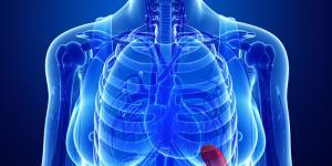 Bazo inflamado: causas, síntomas y tratamiento