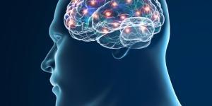 Cómo aumentar la serotonina naturalmente