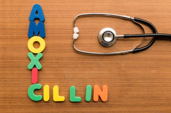 ¿Puedo tomar amoxicilina si soy alérgico a la penicilina? - ¿Para qué sirve la amoxicilina?