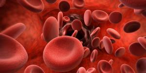Eritrocitos altos en sangre: causas, síntomas y tratamiento