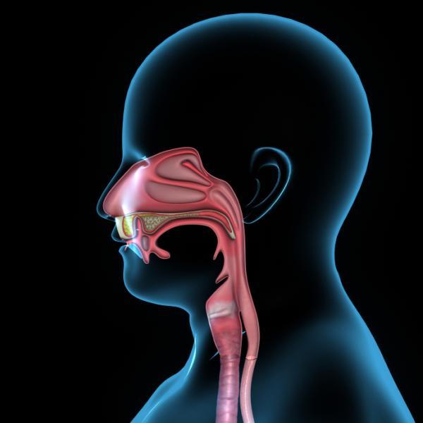 Cómo parar el sangrado de nariz en un niño - Sangrado de nariz en niños: causas