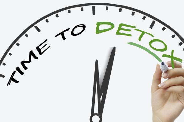 Dieta para desintoxicar el cuerpo en tres días - Claves para hacer una dieta desintoxicante y equilibrada