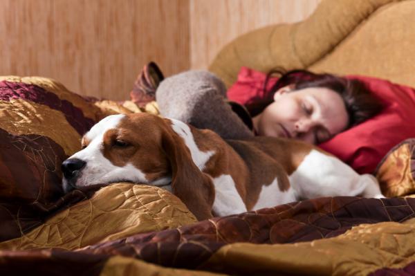 Cómo dormir toda la noche