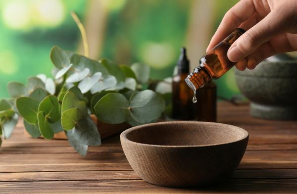 Qué hacer para no sudar tanto - Usa aceite de árbol de té