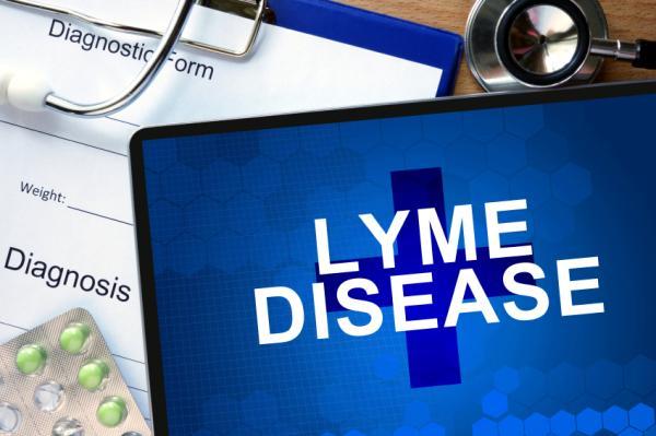 Hormigueo en la cabeza: causas - Hormigueo en la cabeza: enfermedad de Lyme