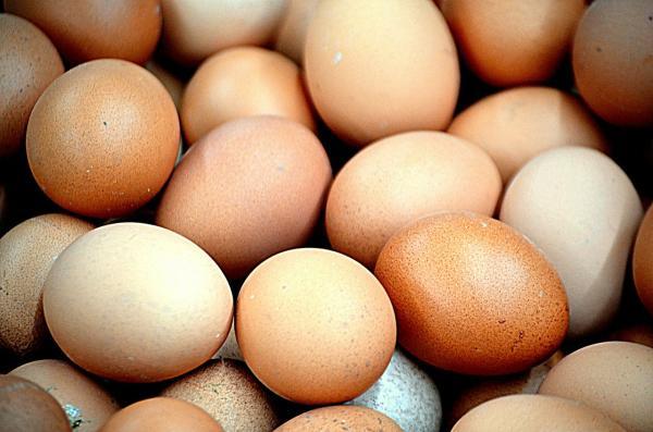 ¿Qué no comer durante el embarazo? - Precaución con el consumo de huevo