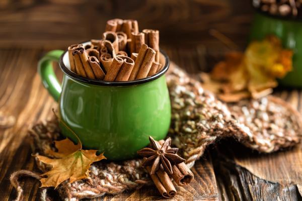 Alimentos para bajar la glucosa en sangre - Canela