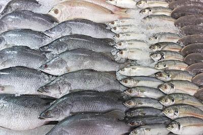 Alimentos con glutamina - lista muy completa - Pescados, aporte natural de glutamina