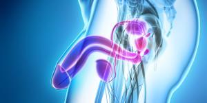 Cuidados después de una biopsia de próstata