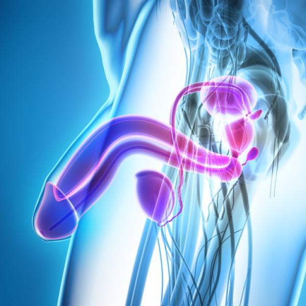 ¿cuánto tiempo dura la recuperacion de una operacion de prostata