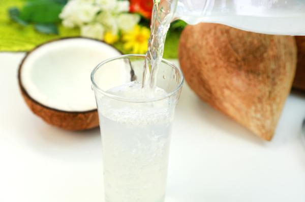 Alimentos para curar el dengue - Agua de coco para nutrir e hidratar