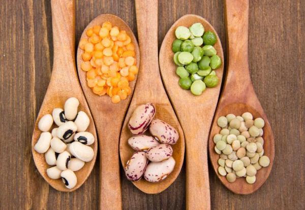 Alimentos ricos em fibra - Alimentos ricos em fibra: legumes e nozes