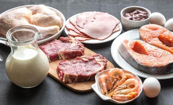 Alimentos ricos em vitamina B12 - Alimentos ricos em vitamina B12