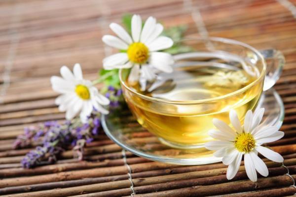 Tratamento caseiro para lubrificação feminina - Camomila: remédio para aumentar lubrificação feminina