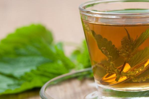 Remédios caseiros para infecção urinária - Chás para infecção urinária