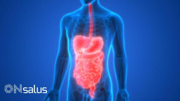 Remédio para intestino inflamado