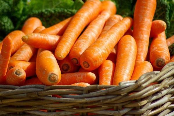 Alimentos antioxidantes e seus benefícios - Alimentos com vitamina A