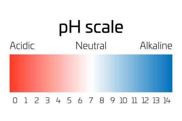 Água alcalina: o que é, para que serve e como fazer - O que é água alcalina